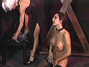 Blonde transsexual mistress amusing with slave